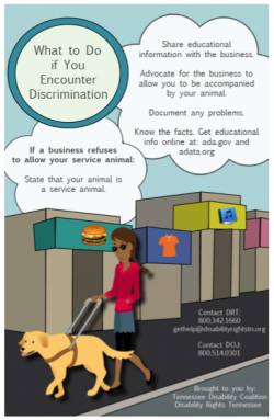 Cover Image of Service Animal Tip Card